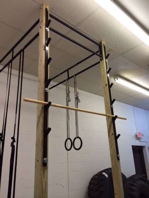 Rogue Salmon Ladder Awesomeness Crossfit Discussion Board